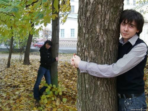 использовать энергию дерева