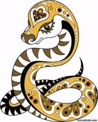 Новый год 2012 Год Змеи