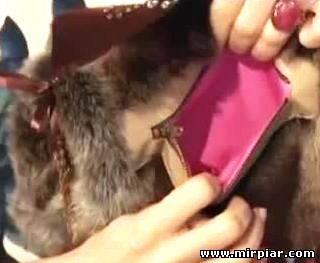 сумка-муфта своими руками