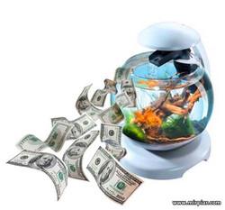 купить аквариум для дома и офиса