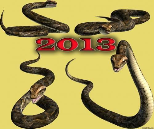 прогноз на 2013 год Змеи