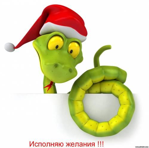Змея Новый год 2013