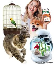 домашние животные: зоомагазин и зоотерапия