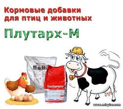 кормовые добавки для птиц и животных