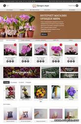 магазин орхидей