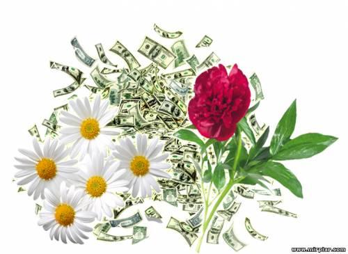 растения для богатства